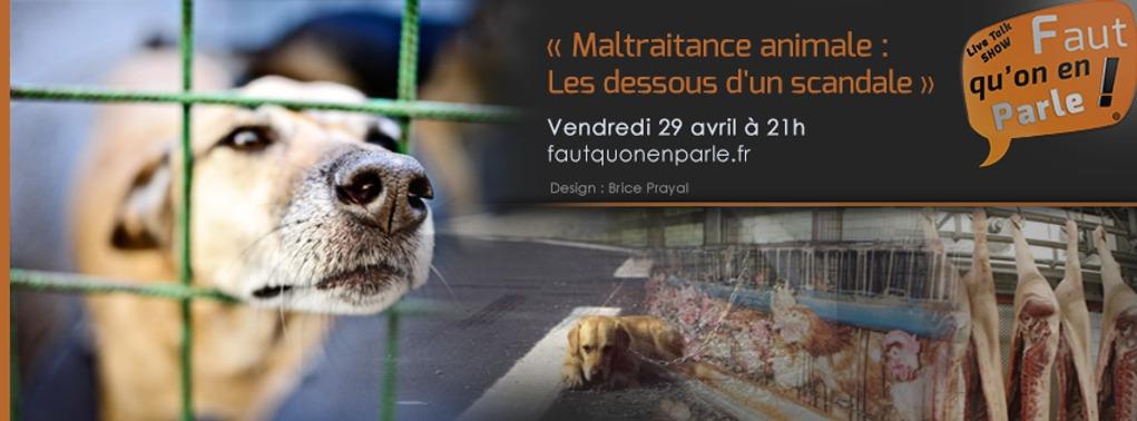 MALTRAITANCE ANIMALE: LES DESSOUS D'UN SCANDALE